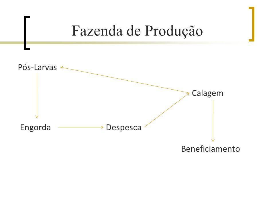 Fazenda de Produção Pós-Larvas Calagem Engorda Despesca Beneficiamento