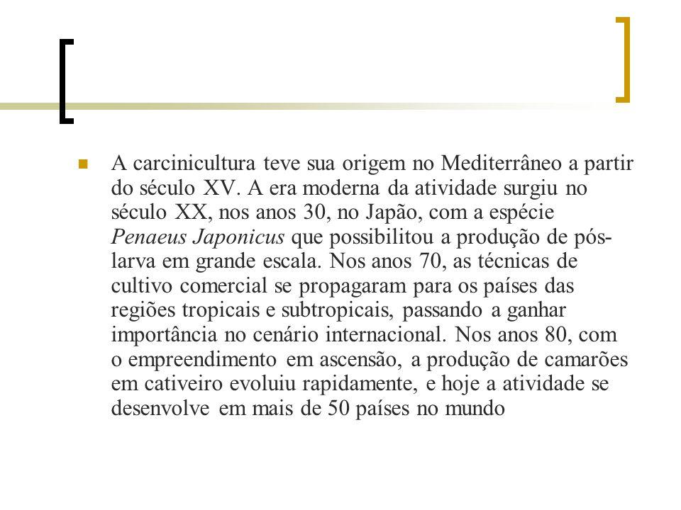 A carcinicultura teve sua origem no Mediterrâneo a partir do século XV