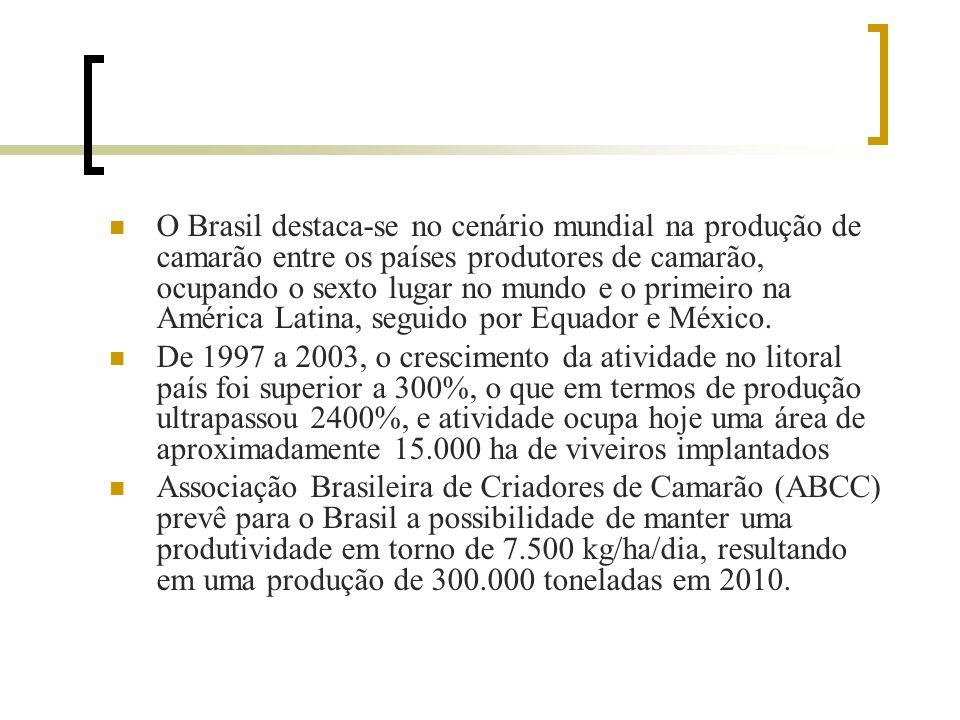 O Brasil destaca-se no cenário mundial na produção de camarão entre os países produtores de camarão, ocupando o sexto lugar no mundo e o primeiro na América Latina, seguido por Equador e México.