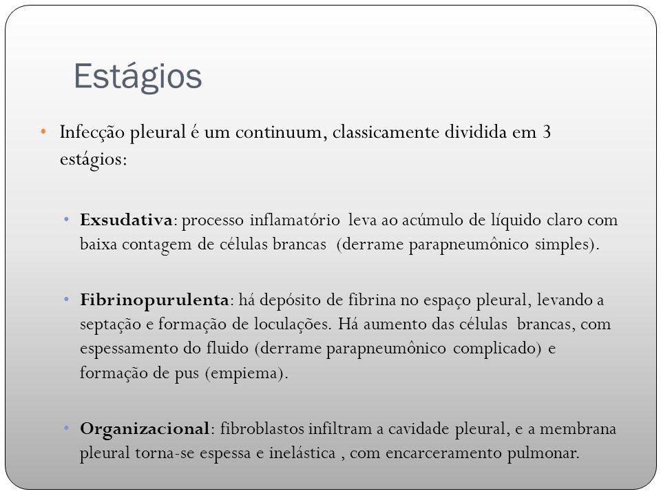 Estágios Infecção pleural é um continuum, classicamente dividida em 3 estágios: