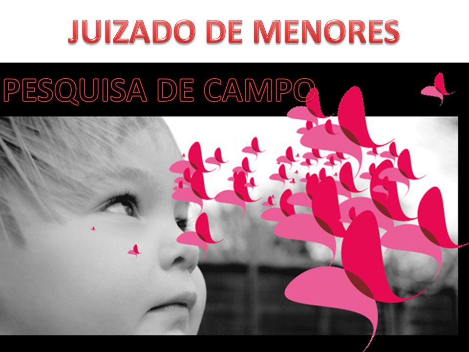 JUIZADO DE MENORES PESQUISA DE CAMPO