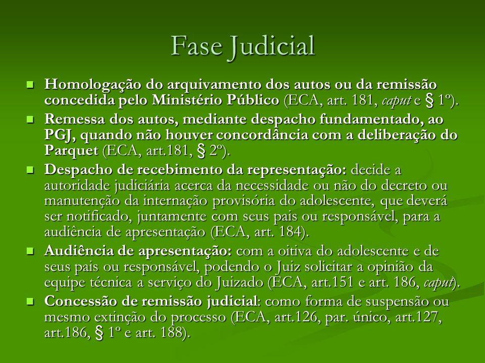 Fase Judicial Homologação do arquivamento dos autos ou da remissão concedida pelo Ministério Público (ECA, art. 181, caput e § 1º).