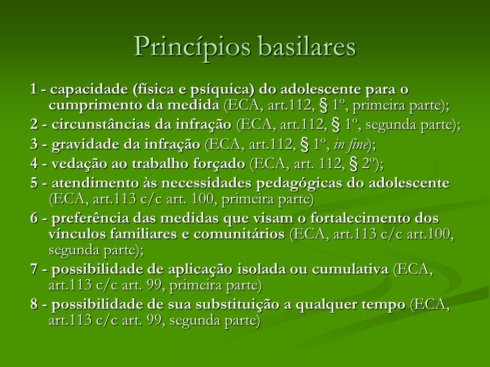 Princípios basilares 1 - capacidade (física e psíquica) do adolescente para o cumprimento da medida (ECA, art.112, § 1º, primeira parte);