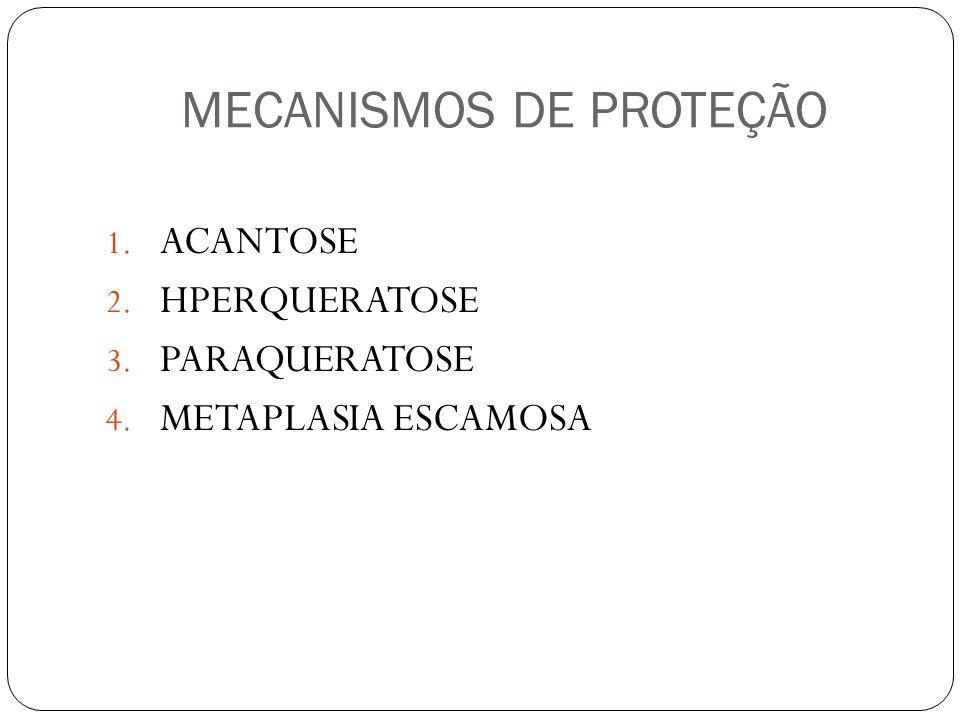 MECANISMOS DE PROTEÇÃO