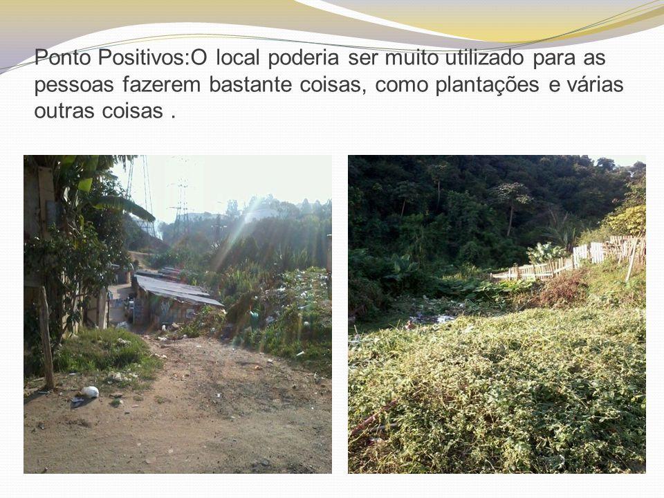 Ponto Positivos:O local poderia ser muito utilizado para as pessoas fazerem bastante coisas, como plantações e várias outras coisas .