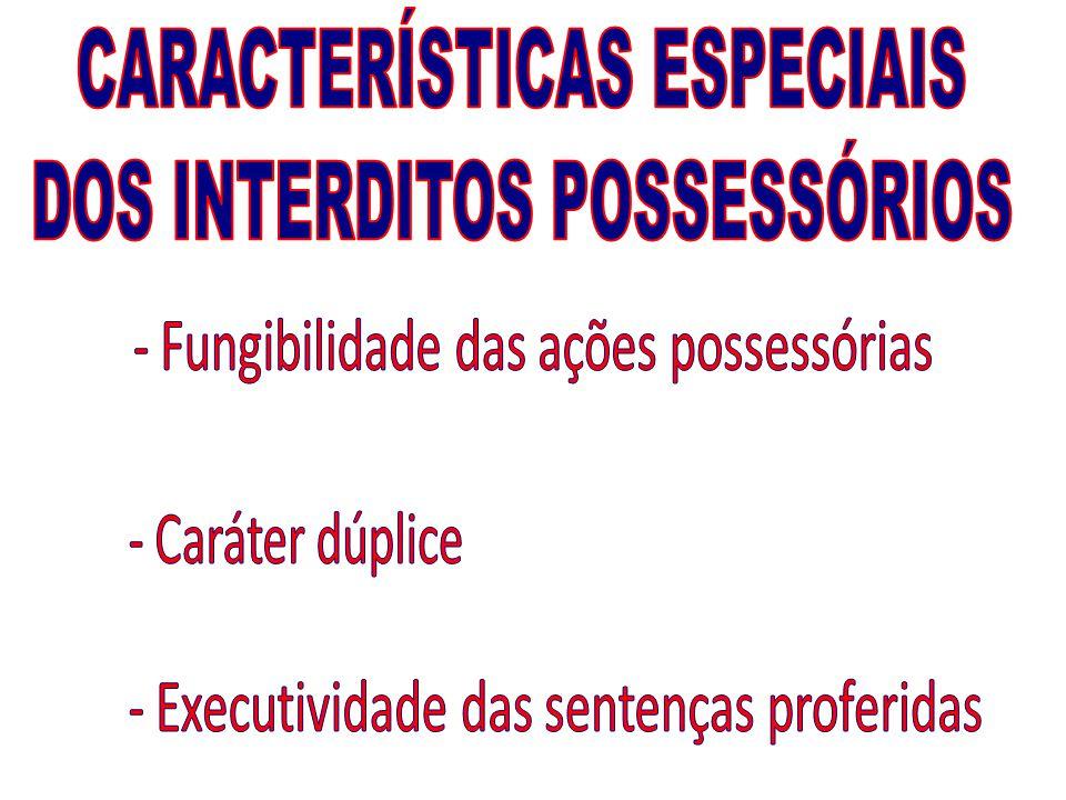 CARACTERÍSTICAS ESPECIAIS DOS INTERDITOS POSSESSÓRIOS