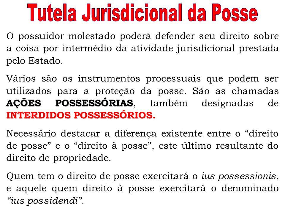 Tutela Jurisdicional da Posse
