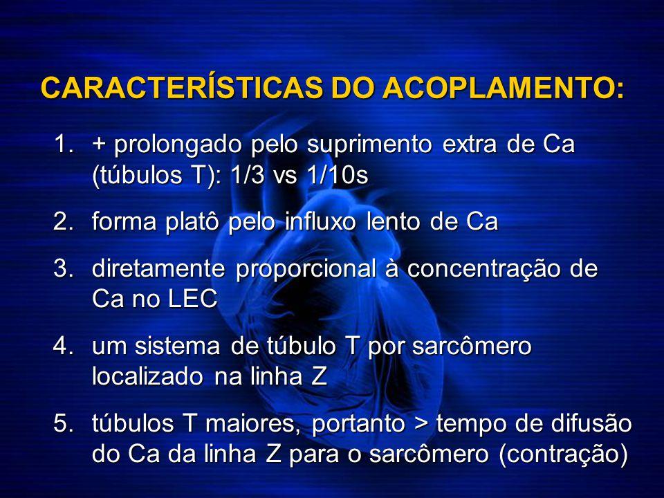CARACTERÍSTICAS DO ACOPLAMENTO: