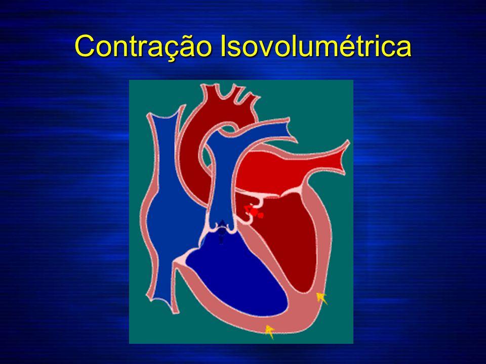 Contração Isovolumétrica