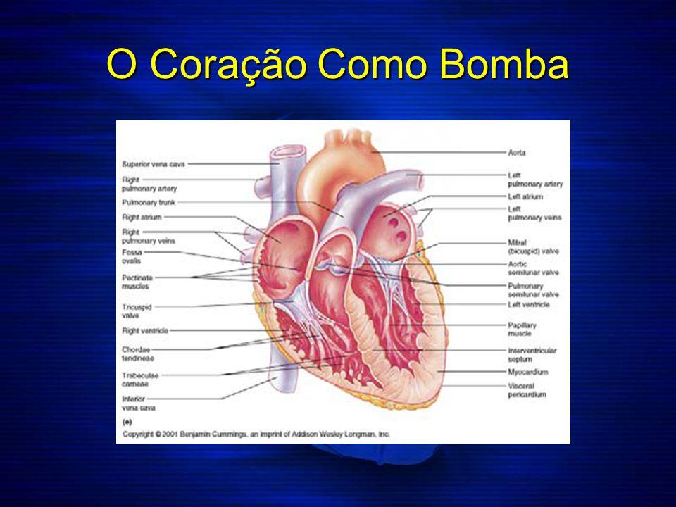 O Coração Como Bomba