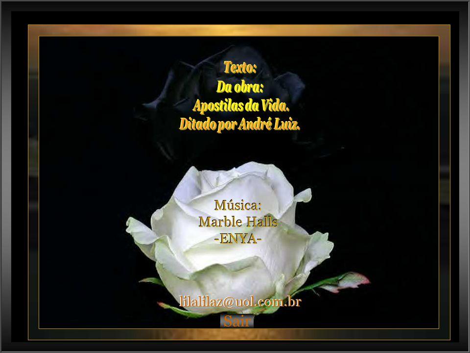 Sair Música: Marble Halls -ENYA- lilalilaz@uol.com.br Texto: Da obra: