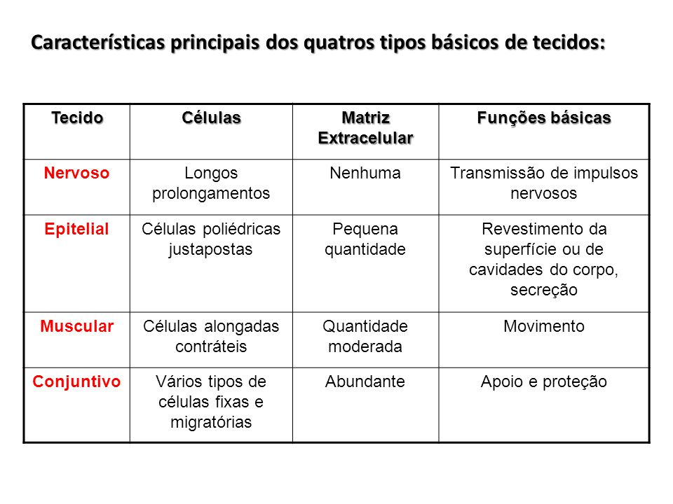 Características principais dos quatros tipos básicos de tecidos: