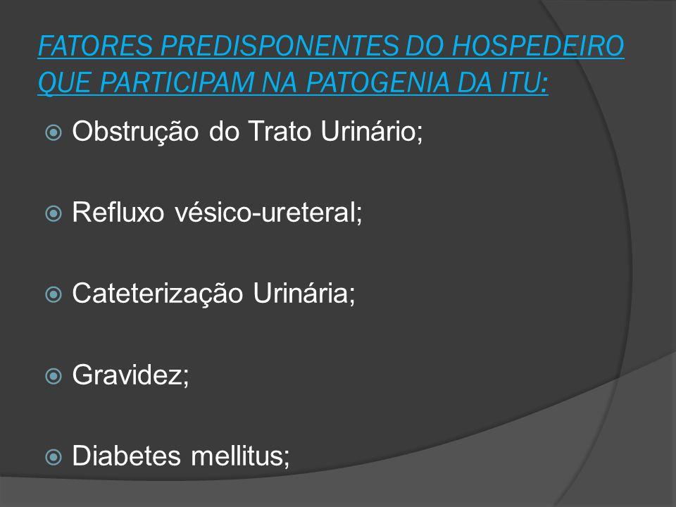 FATORES PREDISPONENTES DO HOSPEDEIRO QUE PARTICIPAM NA PATOGENIA DA ITU: