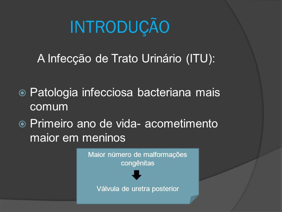 INTRODUÇÃO A Infecção de Trato Urinário (ITU):