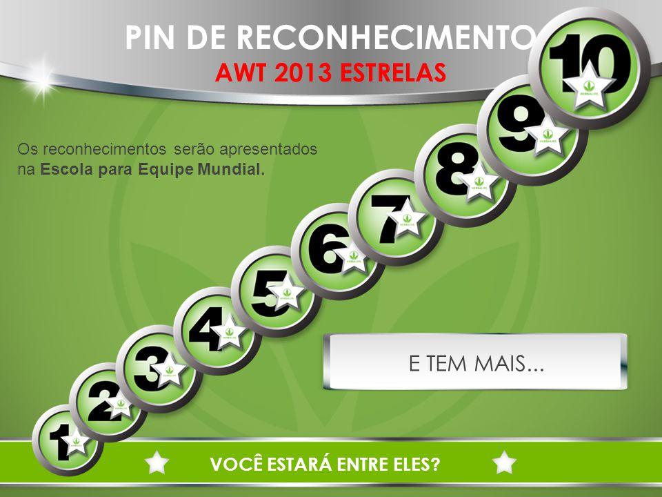 PIN DE RECONHECIMENTO AWT 2013 ESTRELAS E TEM MAIS...