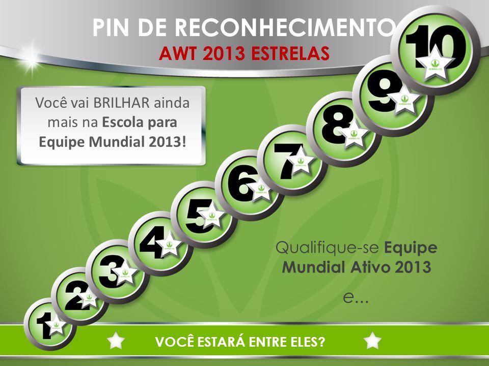 PIN DE RECONHECIMENTO AWT 2013 ESTRELAS e...
