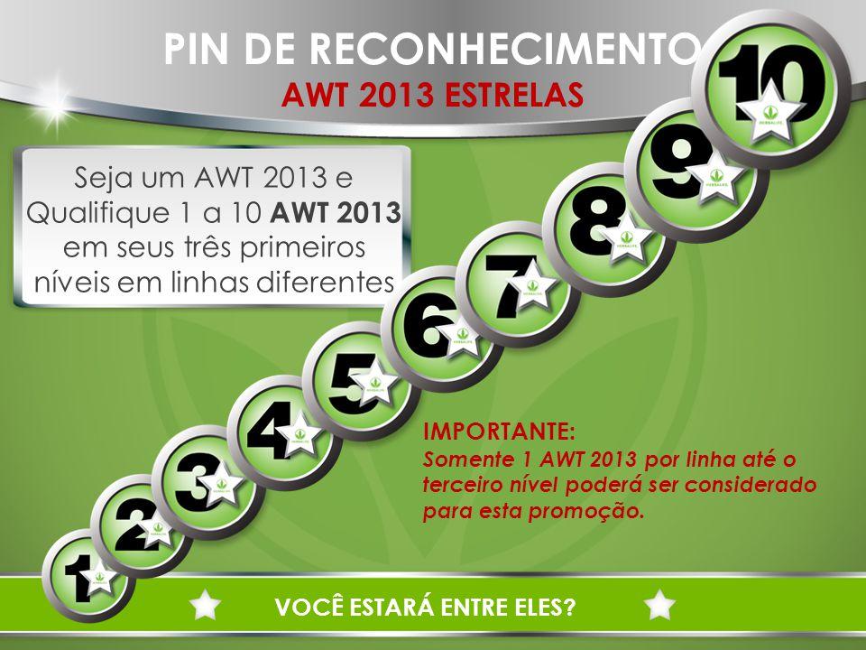 PIN DE RECONHECIMENTO AWT 2013 ESTRELAS