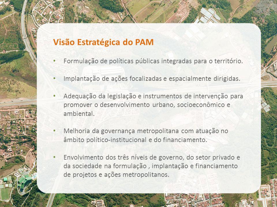 Visão Estratégica do PAM