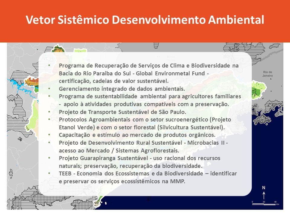 Vetor Sistêmico Desenvolvimento Ambiental