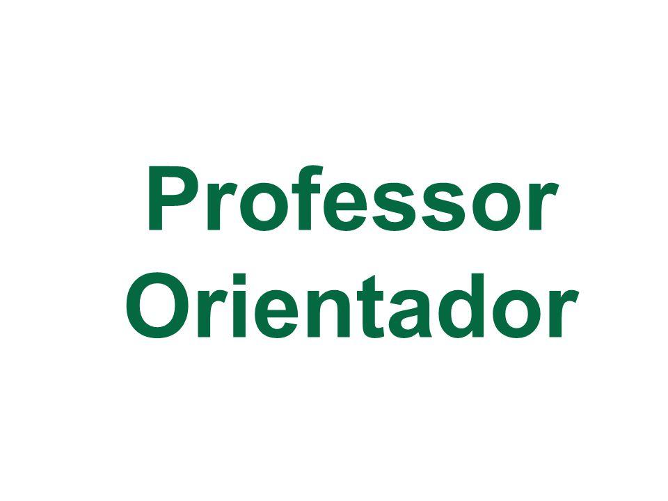 Professor Orientador