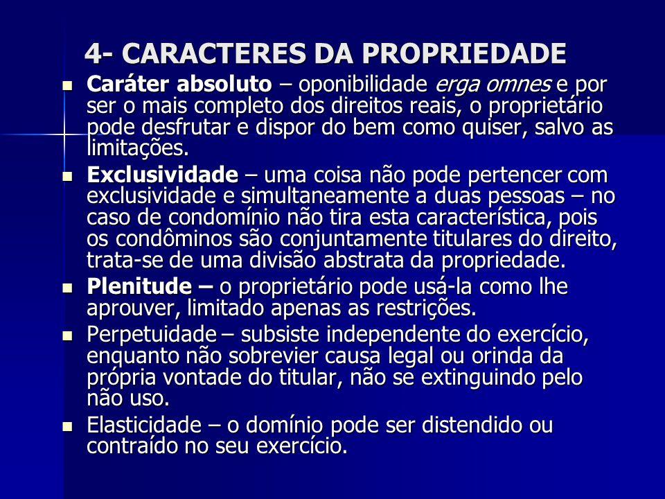 4- CARACTERES DA PROPRIEDADE