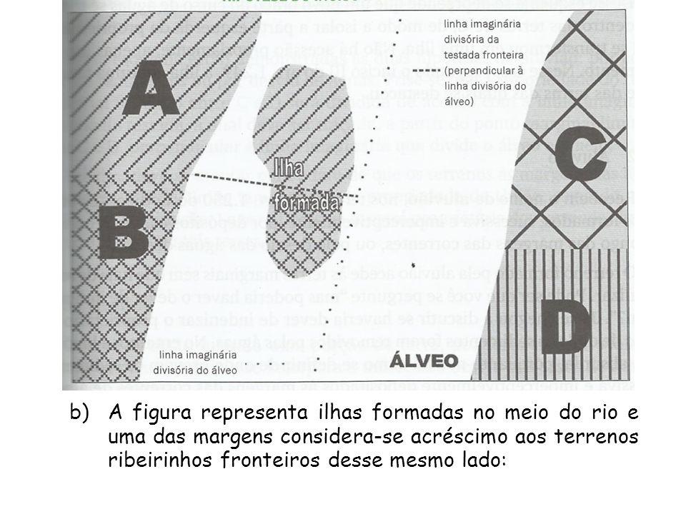 A figura representa ilhas formadas no meio do rio e uma das margens considera-se acréscimo aos terrenos ribeirinhos fronteiros desse mesmo lado: