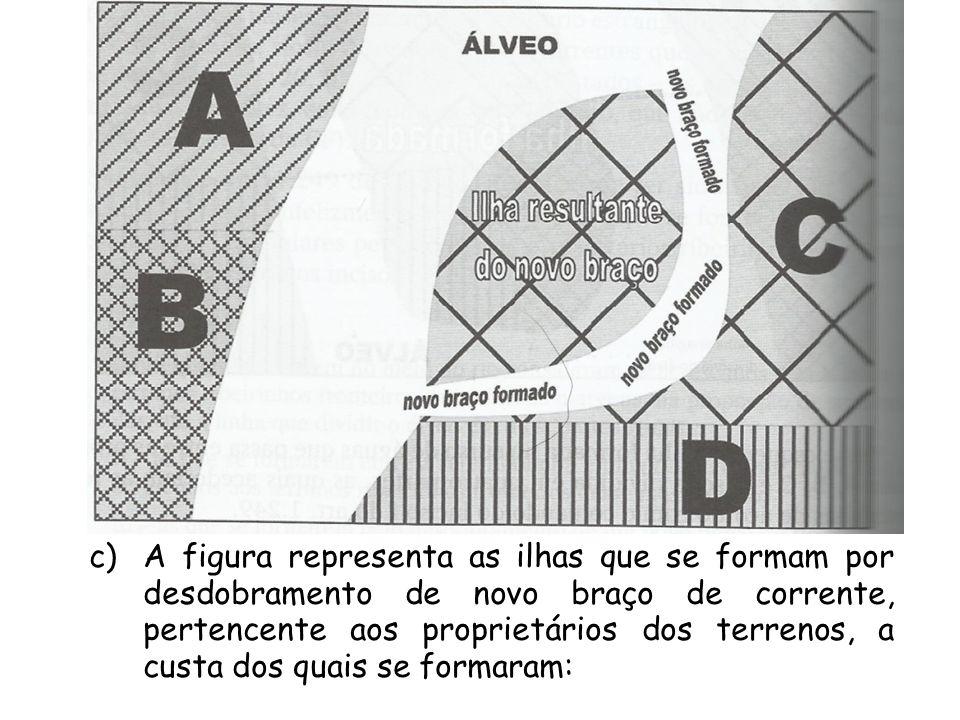 A figura representa as ilhas que se formam por desdobramento de novo braço de corrente, pertencente aos proprietários dos terrenos, a custa dos quais se formaram: