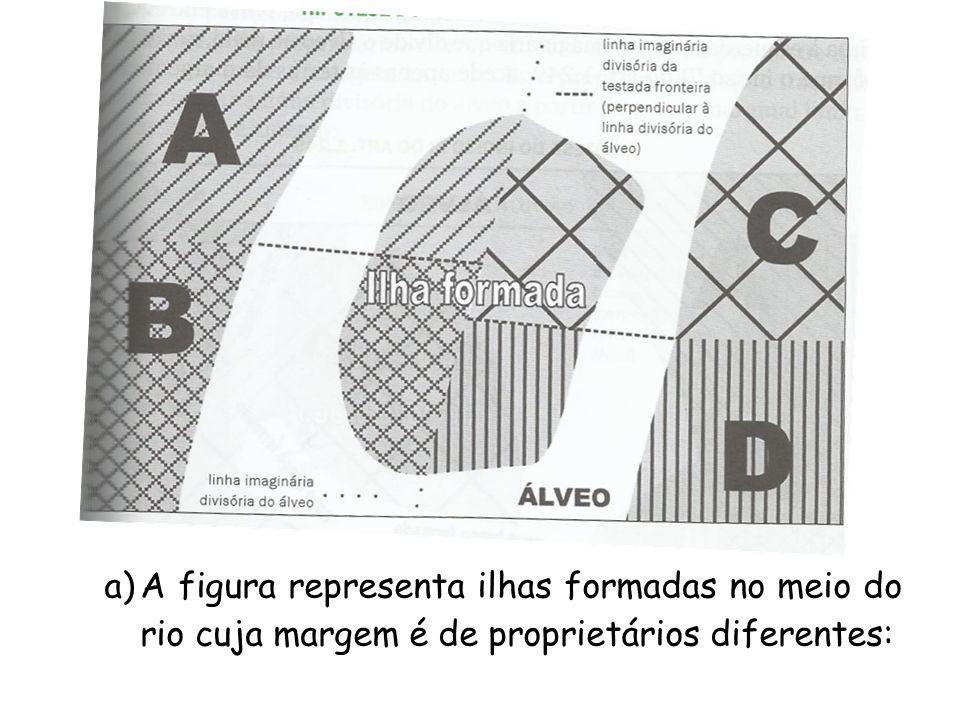 A figura representa ilhas formadas no meio do rio cuja margem é de proprietários diferentes:
