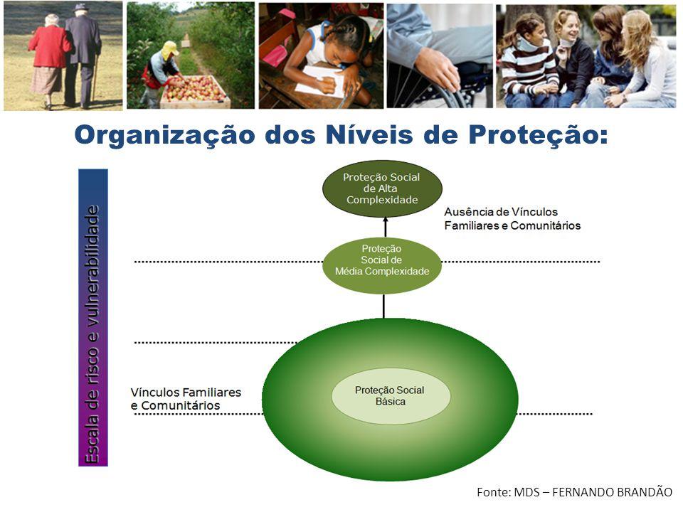 Organização dos Níveis de Proteção: