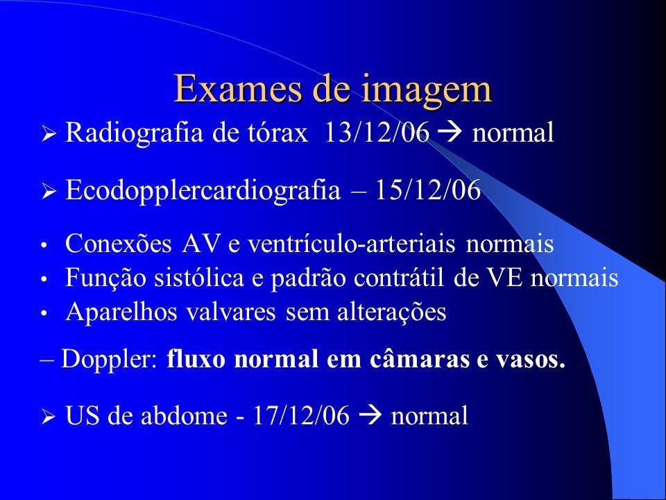 Exames de imagem Radiografia de tórax 13/12/06  normal