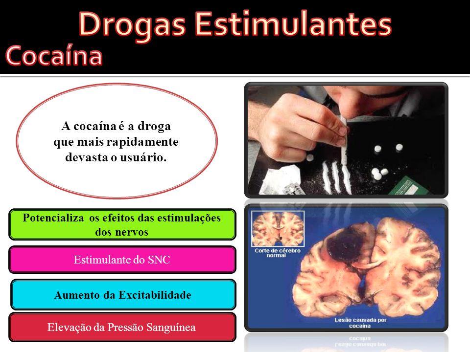 Drogas Estimulantes Cocaína Drogas Alucinantes