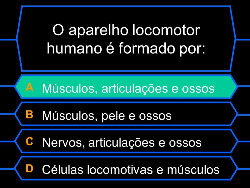 O aparelho locomotor humano é formado por: