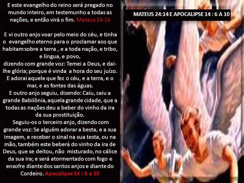 MATEUS 24:14 E APOCALIPSE 14 : 6 A 10