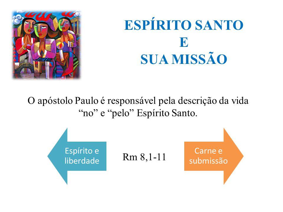 ESPÍRITO SANTO E SUA MISSÃO