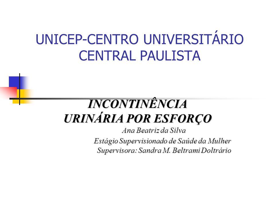 UNICEP-CENTRO UNIVERSITÁRIO CENTRAL PAULISTA