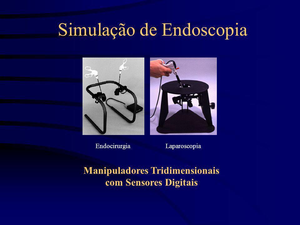 Simulação de Endoscopia