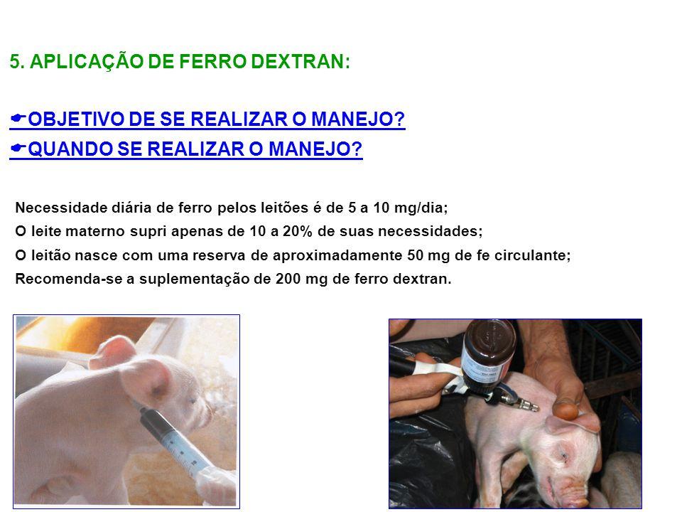 5. APLICAÇÃO DE FERRO DEXTRAN: