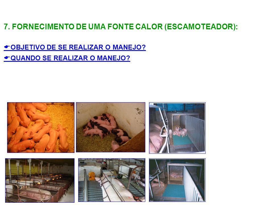 7. FORNECIMENTO DE UMA FONTE CALOR (ESCAMOTEADOR):