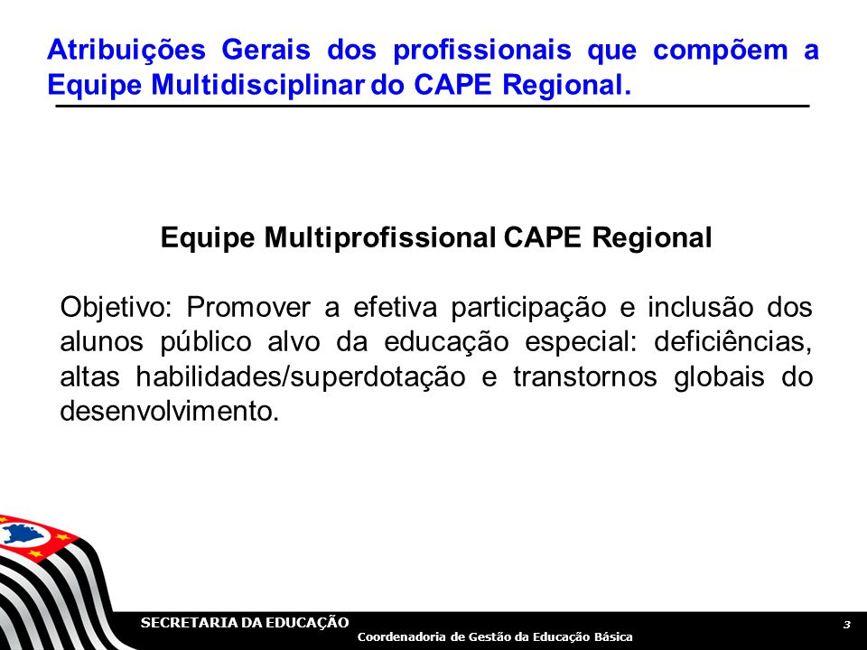 Equipe Multiprofissional CAPE Regional