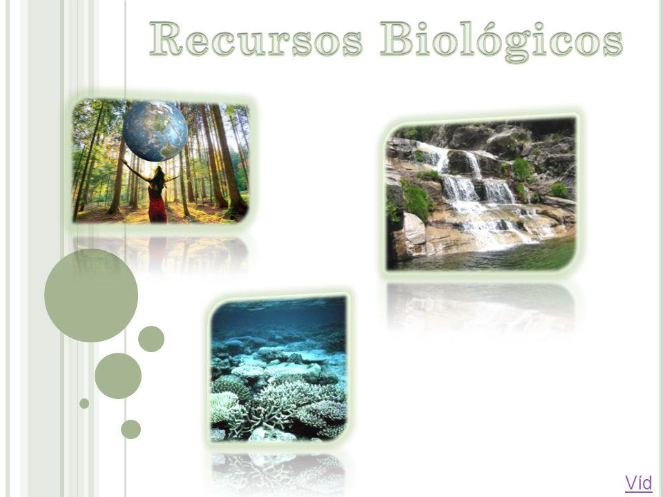 Recursos Biológicos Vídeo