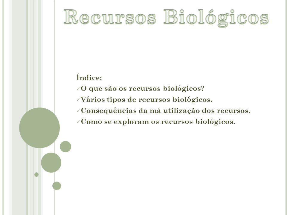 Recursos Biológicos Índice: O que são os recursos biológicos