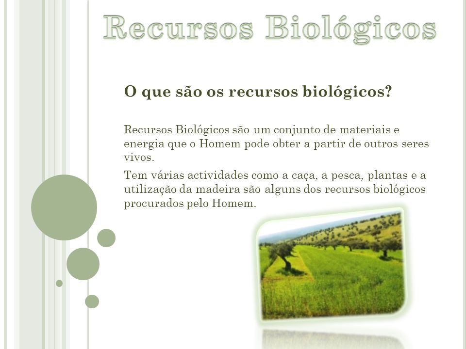 Recursos Biológicos O que são os recursos biológicos