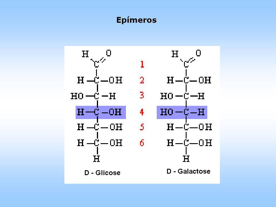 Epímeros