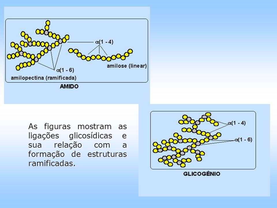 As figuras mostram as ligações glicosídicas e sua relação com a formação de estruturas ramificadas.