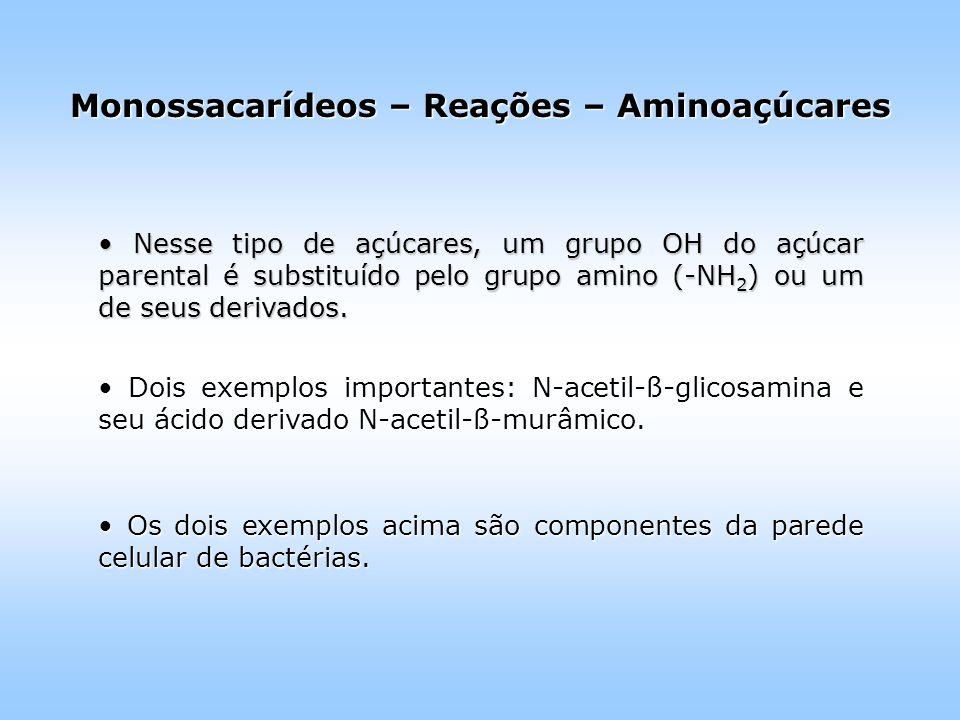 Monossacarídeos – Reações – Aminoaçúcares