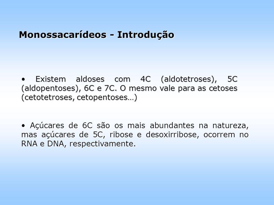 Monossacarídeos - Introdução