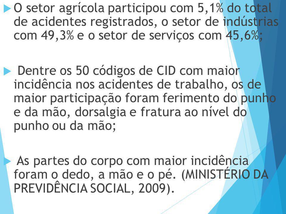 O setor agrícola participou com 5,1% do total de acidentes registrados, o setor de indústrias com 49,3% e o setor de serviços com 45,6%;