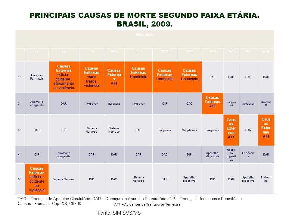 PRINCIPAIS CAUSAS DE MORTE SEGUNDO FAIXA ETÁRIA. BRASIL, 2009.