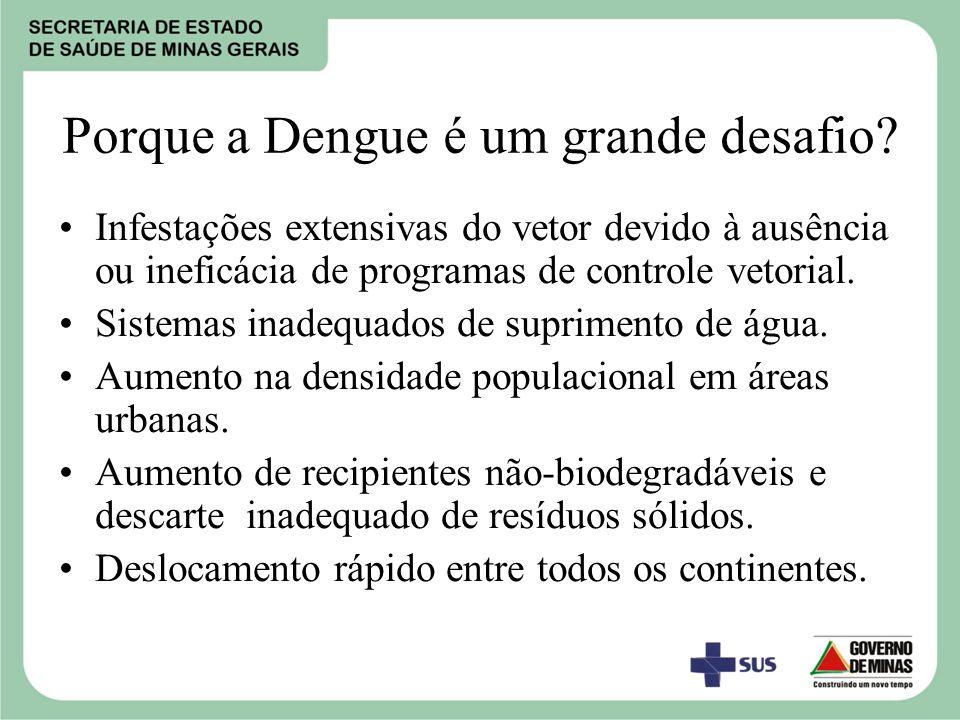 Porque a Dengue é um grande desafio