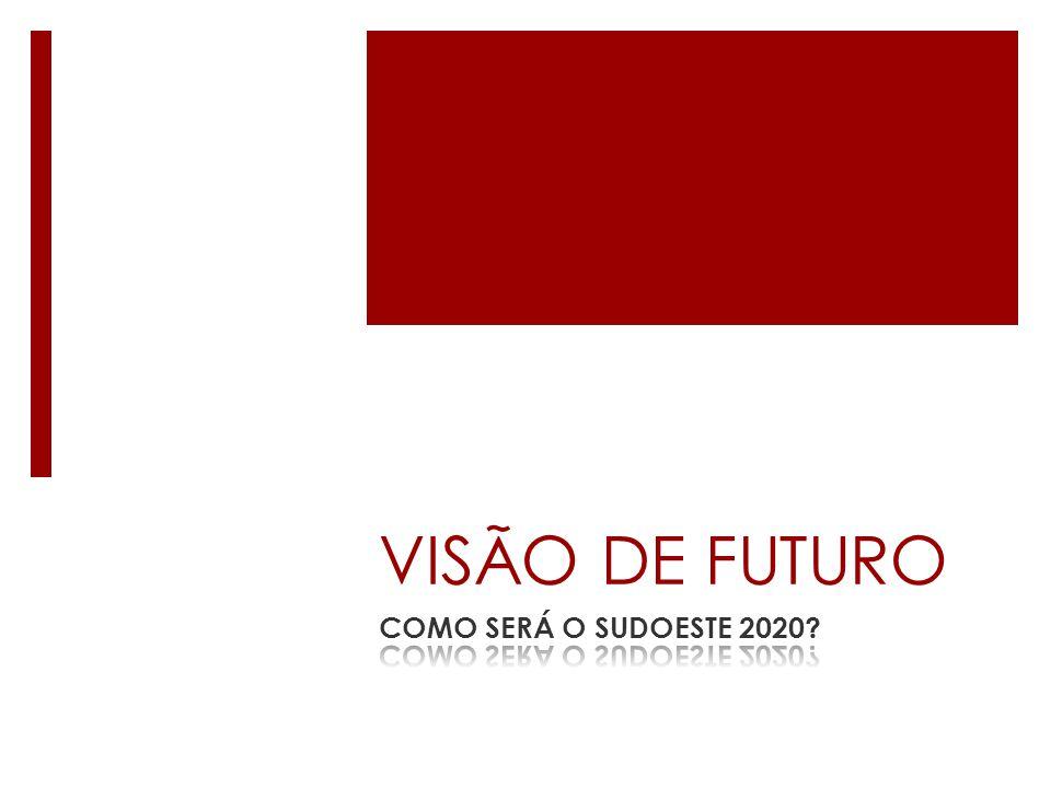 VISÃO DE FUTURO COMO SERÁ O SUDOESTE 2020